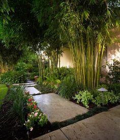 Impresionante jardín de bambú ideas de diseño de paisaje patio de iluminación exterior #diseñodejardines #iluminacionexterior