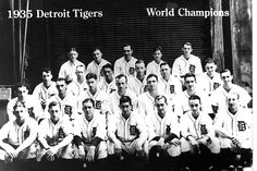 Baseball For Adults Product Detriot Tigers, Tiger World, Tiger Team, Detroit Tigers Baseball, Michigan Wolverines, Team Photos, Places To Visit, Baseball Cards, Den