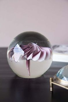 A gorgeous display piece that will keep your work-space or desk super organised the handmade Pink Floral Glass Paperweight is stylish stationary at its very best. Rockett St George, Display Homes, Glass Paperweights, Paper Weights, Home Accessories, Vintage Fashion, Design Inspiration, Ornaments, Elegant