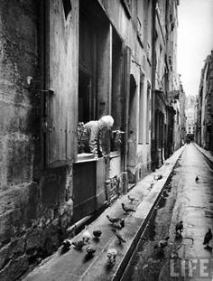 Woman looking out her window at street with pigeons below her.  Photo by Alfred Eisenstaedt.Paris, 1963