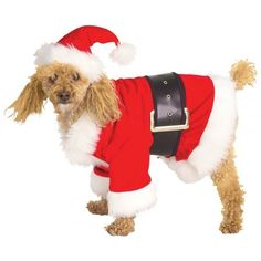 Santa Claus Pet Costume - Santa has never been so cuddly! This Santa Dog Costume includes a pet hat, jacket, and belt! Your puppy dog will will be barking 'ho, ho, ho' this holiday season in the red santa suit trimmed in white fur. Funny Costumes, Dog Halloween Costumes, Pet Costumes, Christmas Costumes, Santa Costumes, Halloween Ideas, Costume Ideas, Christmas Animals, Christmas Dog