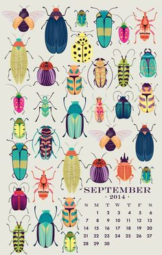 Paper Source Wall Art calendar - discovered it last year. Love it in my office and clients love too! So beautiful and each page reusable! Psyched about next year! Art Calendar, Calendar 2014, Desk Calendars, Calendar Design, Posca Art, Bug Art, Insect Art, Bug Insect, Bugs And Insects