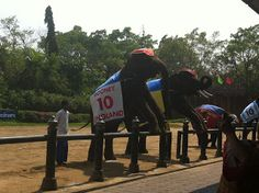 Elephant Park - Bangkok Attractions