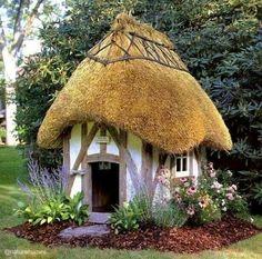 .Mushroom house