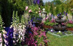 Valg af blomster til den nemme have