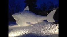 Snow Shark Progression
