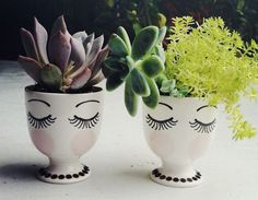 A cute and easy DIY project to do at home with little flower pots. Get creative and draw faces on the pots to plant your little succulents or cacti. Cacti And Succulents, Potted Plants, Indoor Plants, Succulent Planters, Plant Pots, Diy Planters, White Planters, Planter Ideas, Small Plants