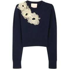 ROKSANDA Nobuya appliquéd wool jumper (2.555 BRL) ❤ liked on Polyvore featuring tops, sweaters, woolen sweater, wool tops, embroidered top, roksanda top and blue sweater