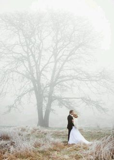 incredible  winter wedding photos nearby the big tree