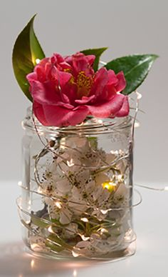 Wedding Decor Idea: This is so creative! Add fairy lights and flower petals to a mason jar, top with a large flower bloom or just leave as is. You could also do this with ribbons or marbles inside and use them as aisle markers and centerpieces!