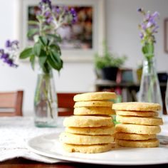 Biscotti con parmigiano (Parmesan rounds) |  italy on my mind