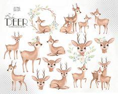 Deer Drawing Easy, Easy Drawings, Elephant Illustration, Cute Illustration, Clipart Photo, Baby Deer Tattoo, Decoration Creche, Watercolor Deer, Deer Baby Showers
