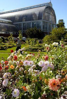 Sweden's incredible botanical gardens - boasting over 16,000 species and a huge rock-gardens.