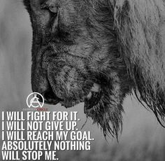 No motivation? you keep looking in the mirror and don't like what you are seeing? Well, if you are looking for fitness motivation tips to get you up off your butt and start sweat Lion Quotes, Me Quotes, Qoutes, Quotes With Lions, Music Quotes, Wisdom Quotes, Motivational Images, Inspirational Quotes, Ambition