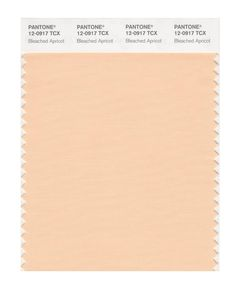 Pantone Smart Swatch 12-0917 Bleach Apricot Pantone, Light Peach, Spring Colors, Color Trends, Brown And Grey, Light In The Dark, Bleach, Color Schemes, Swatch
