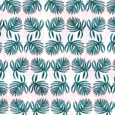 fern pattern / repeat pattern / botanical / tropical / spring summer 2016 / chloe hall illustration
