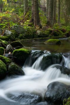 Photo Nature, Flowing Water