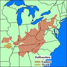 Map of Hellbenders