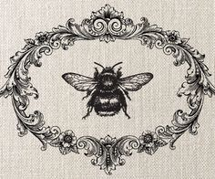bumble bee, decorative frame, illustration, vintage style