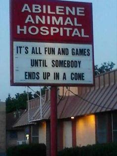 Animal Hospital Humor: It's all fun and games until somebody ends up in a cone. hahahaha my boss is going to think this is hilarious Yorkies, Chihuahuas, Funny Signs, Funny Memes, Funny Quotes, It's Funny, That's Hilarious, Crazy Funny, Cat Memes