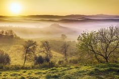 dawn of a misty morning in the valley of Orcia