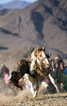 Tenge Alu competition in which the competitor needs to pick up a coin from the ground while riding his horse. Mongolia