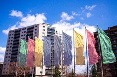 Inspirante au quotidien - crédit photo : Denis Roger Exposition Photo, Place, Marie, Photos, City, Pictures, Photographs