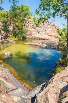 Kakadu National Park - Australia. One of the best 34 things to do in the Northern Territory. Visit our blog to see the other 33 places!