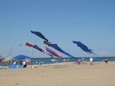 Kite beach 2 Presque Isle must remember to pack fred's good kite from obx for college :)