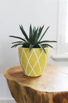 DIY summer projects - Pineapple plant pot. Pineapples are a huge trend this summer, and one easy way to tie them into your home décor is with a cute, DIY painted pot.