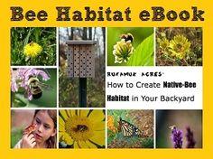 Homestead Honey | Spring Homestead Reading List | #Bee Habitat eBook #bees #bee_keeping