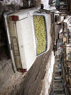 Old Soviet-era Volga brimming with golden winter apples. Baku, Azerbaijan—Erik Andre Juriks.
