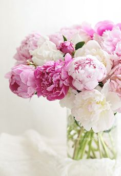 Vase of peonies a gorgeous, lush bunch of summer peonies in shades of pink. Beautiful light bright still life for your shabby chic cottage. To order this print, please use the drop down menu to choose Flowers Nature, Exotic Flowers, Pink Flowers, Beautiful Flowers, Yellow Roses, Flowers Garden, Pink Roses, Flowers Bunch, Pink Peonies