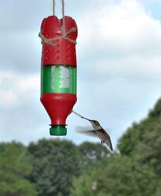 Cool bird feeder