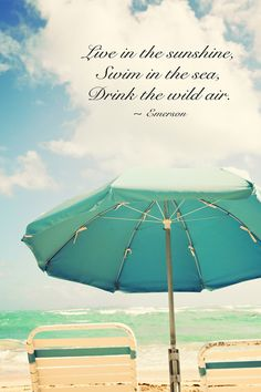 ......live in the sunshine, swim in the sea, drink the wild air.  -Emerson