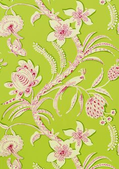 ECUADOR, Pink and Green, T9250, Collection Avalon from Thibaut