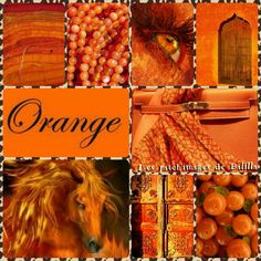 ~Katarina~Collage by Miss Katarina Orange You Glad, Orange Is The New, Color Wars, Color Collage, Just Peachy, Orange Crush, Colour Board, Happy Colors, Season Colors