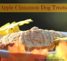 Easy 3 ingredient Apple Cinnamon Dog Treats! Your dog will think you are a Master Chef from the minute these start to cook!