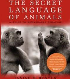 The Secret Language Of Animals: A Guide To Remarkable Behavior PDF