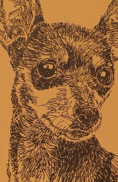 Miniature Pinscher - Artist Kline draws his dog art using only words. Signed Lithograph - Artist Will Add Your Dogs Name Free Mini Pinscher, Miniature Pinscher, In The Zoo, Different Dogs, Animal Drawings, Dog Drawings, Drawing Animals, Animal Paintings, Exotic Pets