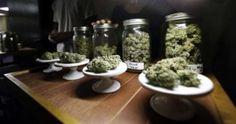 Cronaca: #Legalizzazione della #marijuana: quali gli effetti collaterali? (link: http://ift.tt/2dE0gTa )