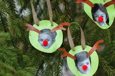 Family Reindeer Ornaments: Video - http://www.pbs.org/parents/crafts-for-kids/family-reindeer-ornaments-video/