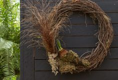 Living Gifts: Our Forced Bulb Wreath in The BULLETIN at Terrain