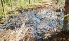 Alberta oil spills cause concern over Canada's approval of tar sands project