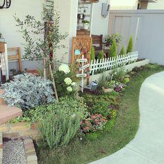 Entrance/ダイソー/ナチュラル/植物/庭/雑貨...などのインテリア実例 - 2016-07-05 06:45:41   RoomClip (ルームクリップ)