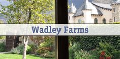Wadley Farms is remodeling their venue and it looks great.