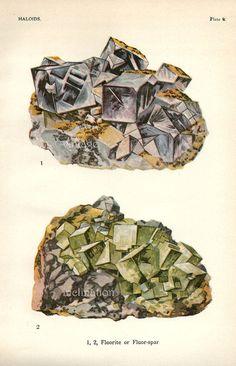 Vintage 1916 Minerals Print Antique Gems by VintageInclination