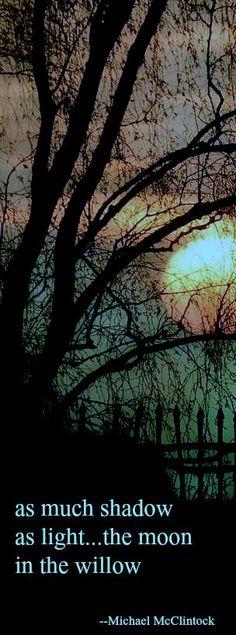 Haiku poem: as much shadow --by Michael McClintock.