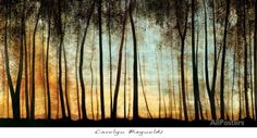Golden Forest Prints by Carolyn Reynolds at AllPosters.com
