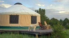We found seven cool yurts currently for sale! These small, circular structures hold a mystical allure for folks looking for a different type of domicile.